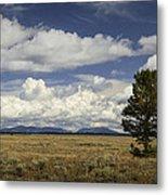 Lone Tree In The Grand Teton National Park Metal Print