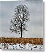 Lone Tree In Winter Metal Print
