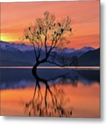 Lone Tree Is Not Lonely Metal Print