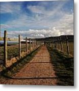 Lone Walker On The North Yorkshire Coastal Path Metal Print