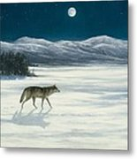 Lone Wolf In Winter   Version 2 Metal Print by Steve Swavely