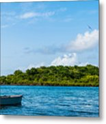 Lonely Boat Metal Print by Luis Alvarenga
