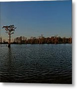 Lonely In The Middle Metal Print