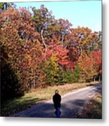 Lonely Road Home Metal Print