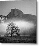 Lonely World Metal Print