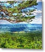 Lonesome Pine Metal Print