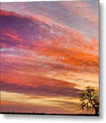 Lonesome Tree Sunrise Metal Print