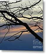 Long Branch Metal Print