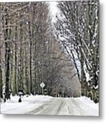 Long Country Road Metal Print