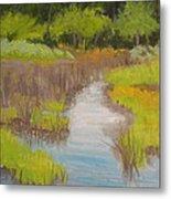 Long Creek Marsh Metal Print