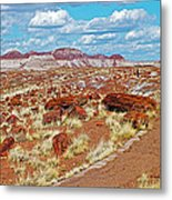 Long Logs Trail In Rainbow Forest In Petrified Forest National Park-arizona  Metal Print