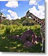 Long Neck Metal Print