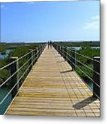 Long St. Augustine Marsh Dock Metal Print