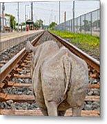 Rhino On A Railway Track Metal Print