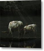 Longhorns Reflections At The Pond Metal Print