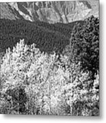 Longs Peak Autumn Scenic Bw View Metal Print
