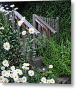 Look After The Daisies Metal Print