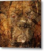 Look Into My Eyes Metal Print by Judy Wood