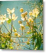 Look Up And You Will See Metal Print