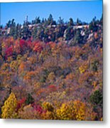 Looking At The Top Of Bald Mountain Metal Print
