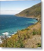 Looking Back At Pch Metal Print
