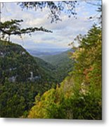 Looking Down The Canyon Metal Print