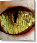 Looking Into The Soul Metal Print