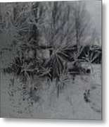 Looking Through The Frost I Metal Print