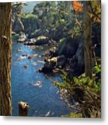 Looking Through The Trees At Point Lobos Metal Print