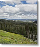 Looking To The Canyon - Yellowstone Metal Print