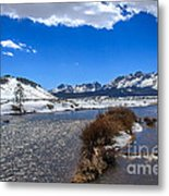 Looking Up The Salmon River Metal Print