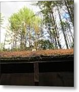 Looking Up The Shed Metal Print
