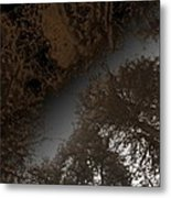 Looking Up Through Copper Forest Metal Print