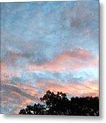 Looks Like And Oil Painted Sky Metal Print