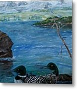 Loon Family And Morning Mist Metal Print