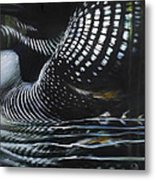 Loon Reflections Metal Print by Lynette Yencho