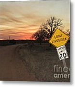Loose Livestock Sign Metal Print