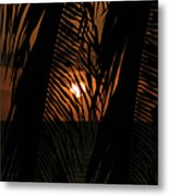 Lost And Found In Sunset Land Metal Print
