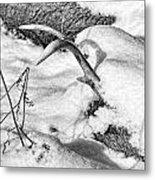 Lost Deer Metal Print