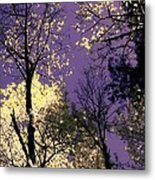 Lost In Admiration Metal Print