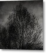 Lost In Moments Metal Print