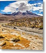 Lost In The Bolivian Desert Framed Metal Print