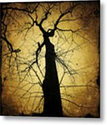 Lost In The Forest I Broke Off A Dark Twig And Lifted Its Whisper To My Thirsty Lips Metal Print