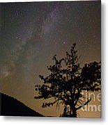Lost In The Night Metal Print