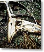 Lost In The Woods Metal Print