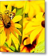 Lost In Yellow Metal Print
