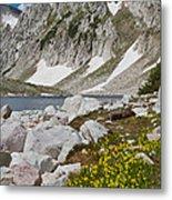 Lost Lake Trail Metal Print