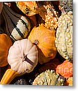 Lots Of Little Gourds Metal Print