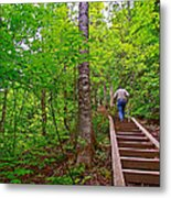 Lots Of Steps On La Chute Trail In Forillon Np-qc Metal Print