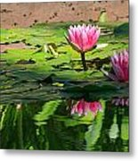 Lotus Flower Reflections Metal Print